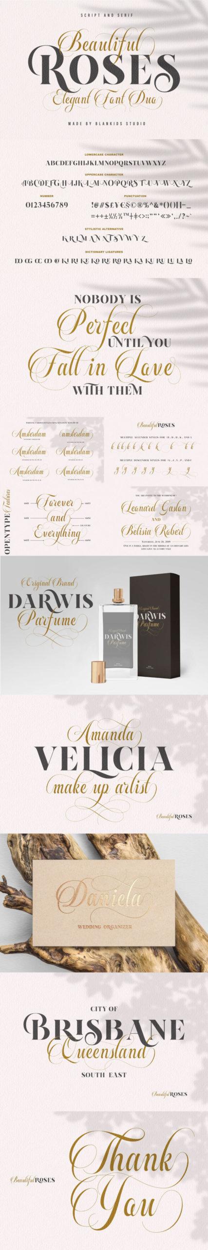 The Luxury Font Bundle