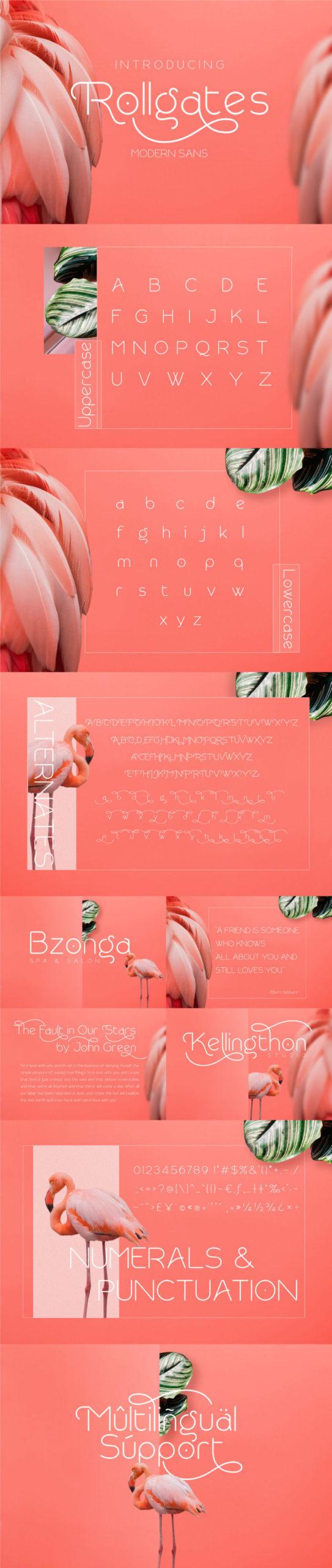 The Modern Font Bundle