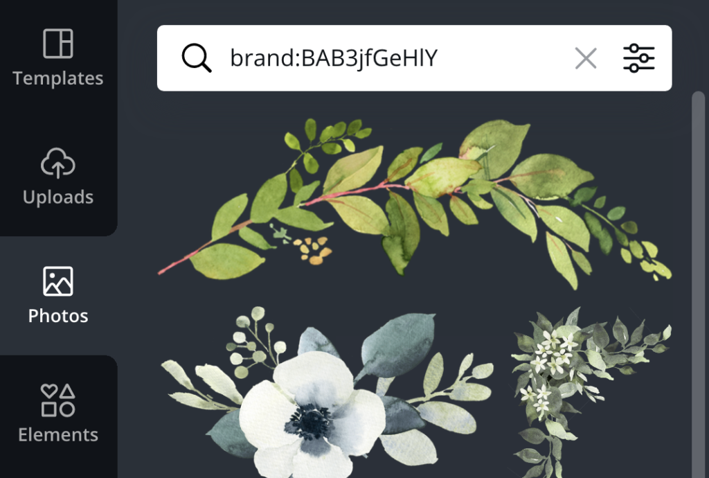 how to use canva brand codes